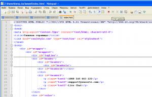 Окно программы Notepad++